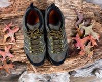 Nuevos zapatos que caminan en fondo de madera putrefacto fotografía de archivo