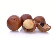 nuez de macadamia en el fondo blanco Imágenes de archivo libres de regalías