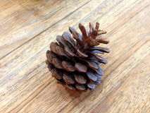 Nuez de pino Imagen de archivo