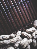 Nuez de tierra en la tabla de madera imagen de archivo