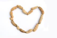 Nuez en forma de corazón Fotografía de archivo libre de regalías