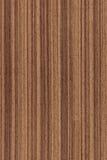 Nuez (textura de madera) Fotos de archivo