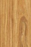 Nuez (textura de madera) Fotografía de archivo libre de regalías