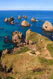 Nugget Point. In the catlins, new zealand Stock Image