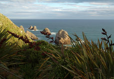 Nugget Point 2. Ocean and rock vista royalty free stock images