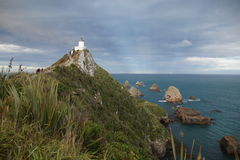 Nugget Point Lighthouse royalty free stock images