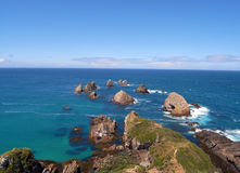 Nugget point rock circle Stock Photos