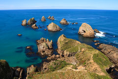 Nugget Point Rocks Royalty Free Stock Photos