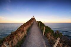 Nugget-Punkt, Neuseeland ist ein Markstein der Südinsel lizenzfreie stockfotos