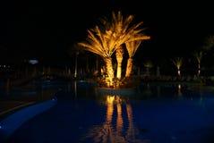 nuit à la piscine Photo libre de droits