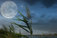 Nuit éclairée par la lune et nuages sur le ciel nocturne dans le lac Image stock