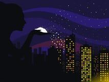 Nuit Photographie stock libre de droits