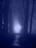 Nuit bleue Image libre de droits