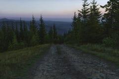 Nuit d'été dans les montagnes après coucher du soleil La route est entourée par des arbres photo stock