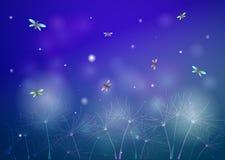 Nuit d'été féerique avec des lucioles, silhouette de clairière la nuit, lucioles à l'arrière-plan rêveur d'été, illustration de vecteur