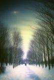 Nuit d'hiver avec des amis en parc Images stock