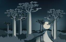 Nuit dans la forêt africaine de baobab près de la rivière 2 Photos stock