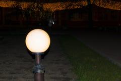 Nuit dans la grande ville, les lumières sont sur les arbres Photos stock