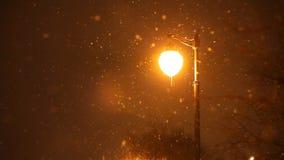 Nuit de chute de neige d'hiver banque de vidéos