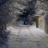 Nuit de l'hiver Images libres de droits