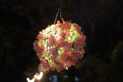 Nuit de lanterne Photos stock