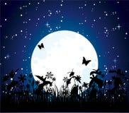 Nuit de lune Photographie stock libre de droits