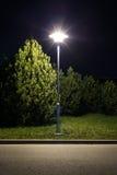 Nuit de parc photo libre de droits