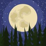 Nuit de pleine lune aux bois Photos libres de droits