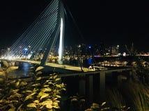 Nuit de Rotterdam Erasmusbrug image stock
