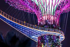 Nuit de Supertree Singapour image stock