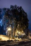 Nuit du paysage d'hiver Photo libre de droits