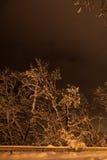 Nuit du paysage d'hiver Image libre de droits