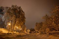 Nuit du paysage d'hiver Images libres de droits