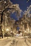 Nuit du paysage d'hiver Images stock