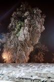 Nuit du paysage d'hiver Photographie stock libre de droits