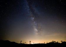 Nuit en Joshua Tree National Park Image libre de droits