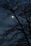 Nuit foncée Photos libres de droits