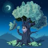 Nuit Forest Design illustration stock