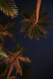 Nuit indienne Image libre de droits
