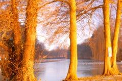 Nuit jaune sur le déménagement de rivière image stock