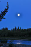 Nuit, lune, rivière et arbres Images libres de droits