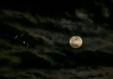 Nuit mystérieuse avec des yeux de chat et de pleine lune Photos stock