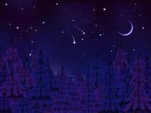 Nuit mystérieuse de forêt Photo libre de droits