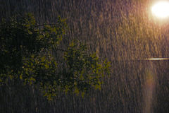 Nuit pluvieuse Image stock