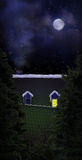Nuit silencieuse illustration de vecteur