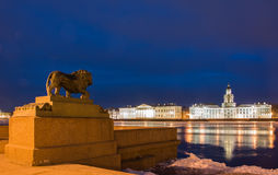 Nuit St Petersburg. Photographie stock libre de droits