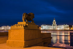Nuit St Petersburg. Images libres de droits