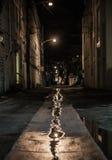 Nuit Vice City de manière d'allée de Miami Images stock