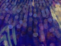 Nuits de Sequin Image stock