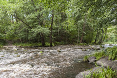 Nukarinkoski. The Nukarinkoski rapids in the River Vantaanjoki in Finland royalty free stock photo